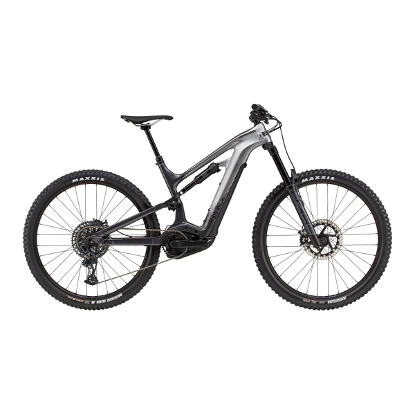 E-Bike ALL MOUNTAIN - L